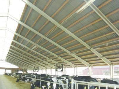 Dostavba mléčné farmy Šumvald